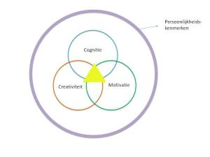 Begaafdheidskenmerken incl. persoonlijkheidskenmerken