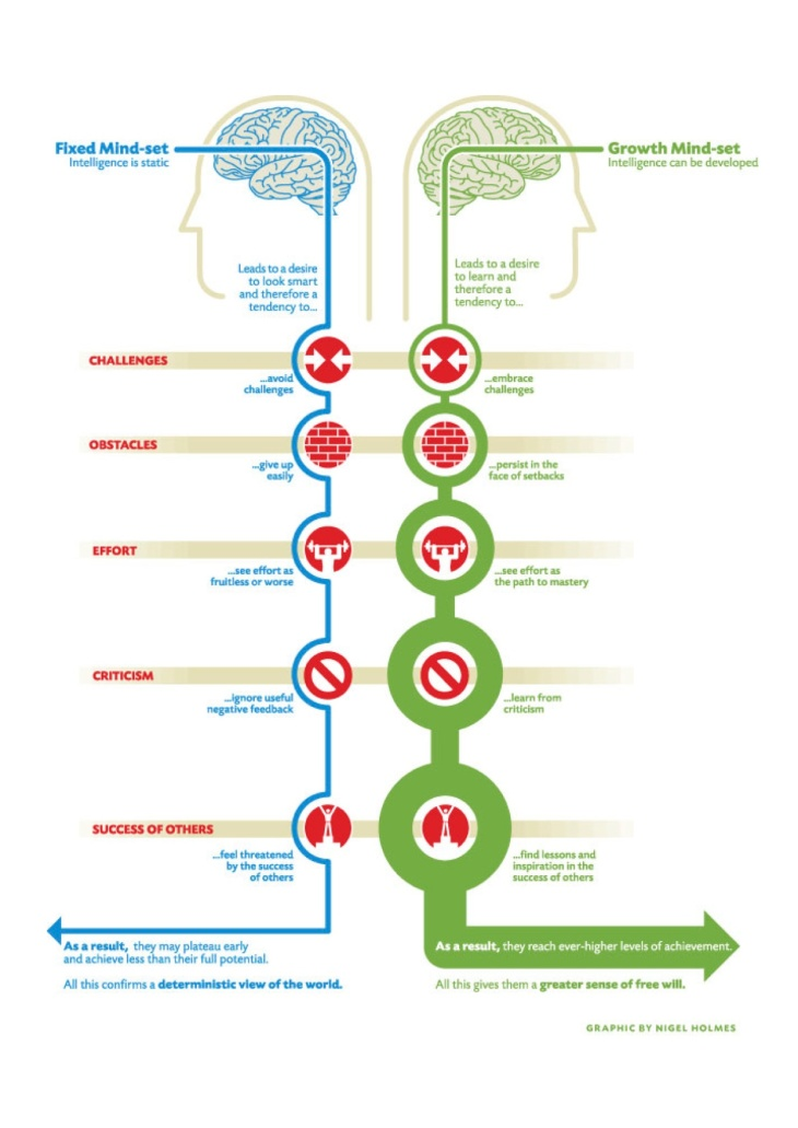 Fixed mindset growth